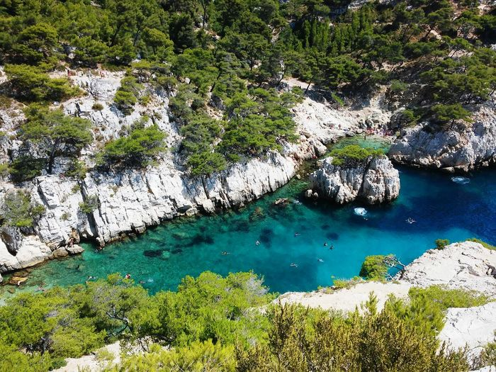 Marsiglia Calanques  France Marseille Nature Sea
