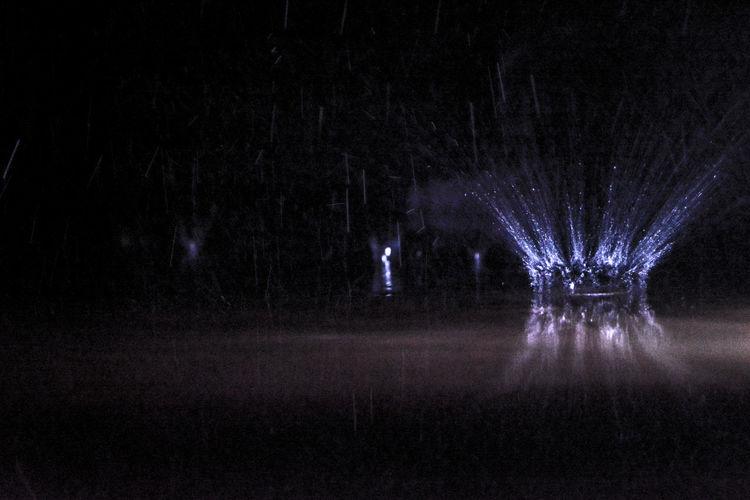 The crown Rain