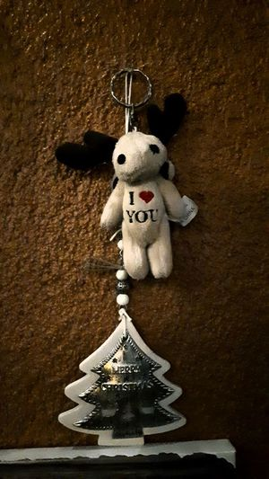 Close-up of stuffed toy hanging against wall