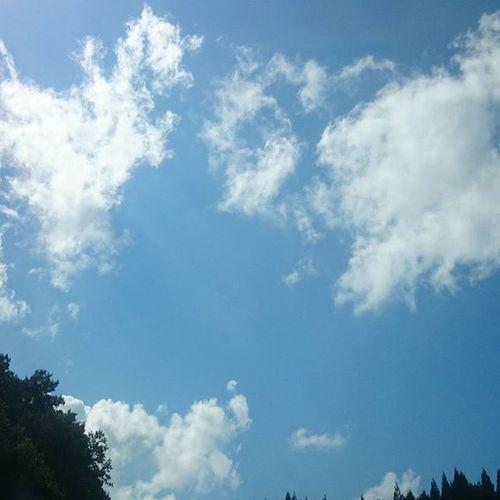 今日の天気のようにスカッと勝ちたいな。 メンデスの選手紹介どんなだろ? 今日は、仕事で遅れるから、気になる。 Zweigen ツエーゲン金沢