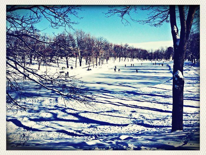 Plutôt belle journée pour patiner...