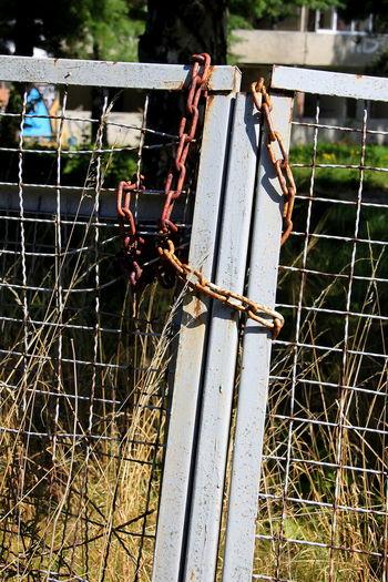 Unter Verschluss Close-up Gate Lock Metal Metal Grate Outdoors Rusty Safety