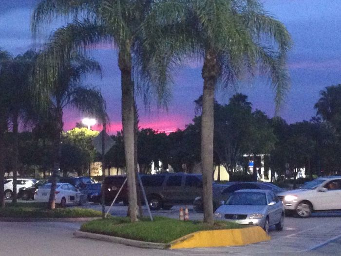 Sunset Near Sawgrass Mall 16.7.14