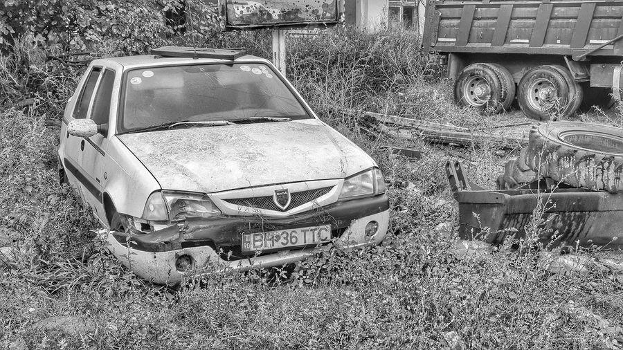 Land Vehicle Car