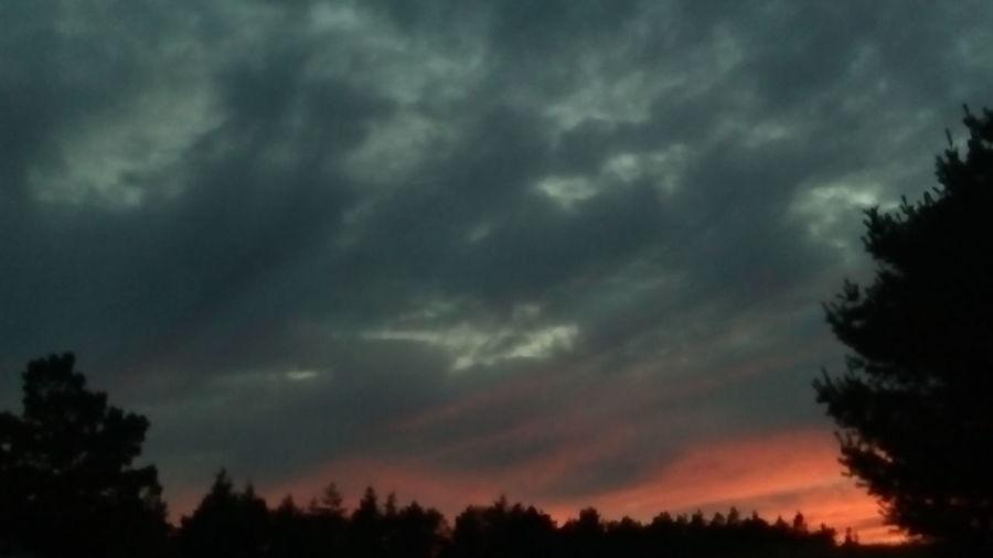 Cloud Sunset Silhouette No People Outdoors Non-urban Scene Tree Dark