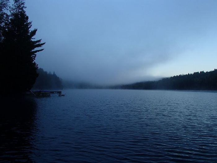 Brume matinale -Morning Mist (Lac Jackson, Mauricie) Mist Misty Morning Lake Water Beauty In Nature Scenics - Nature Sky Tranquility Tranquil Scene Tree Outdoors