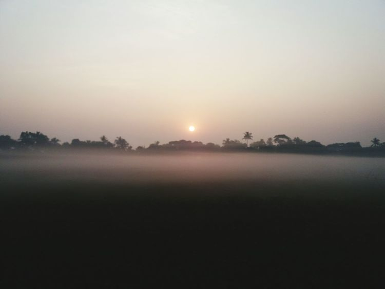 Nature Fog Beauty In Nature Rise And Shine