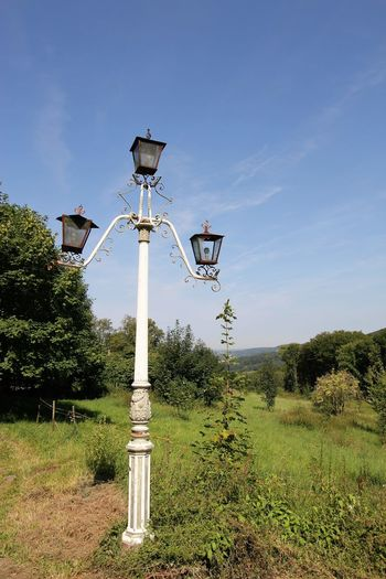 Vintage Lamp Post in the Middle of Nowhere Vintage Lamp Post WTF!? Apocalyptic Beauty In Nature Blue Clear Sky Day Grass Green Color Growth In The Middle Of Nowhere Nature No People Nowhereland Outdoors Sky Technology Tree