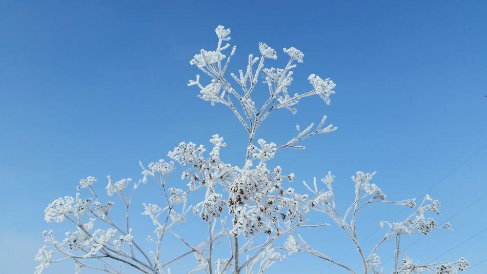 Ukraine Sky Frozen Cold Temperature Ukraine, My Ukraine! Beauty In Nature Day No People Zhytomyr Andrushivka