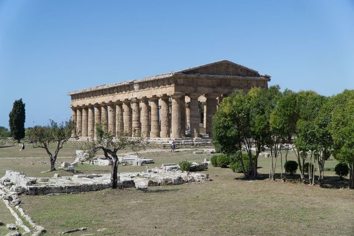 Roman Ruins Temple Sky Plant Architecture Built Structure Clear Sky History The Past Travel Destinations Architectural Column Building Exterior Old Ruin Blue Sunlight Travel Tree Tourism Nature Ancient Day Old