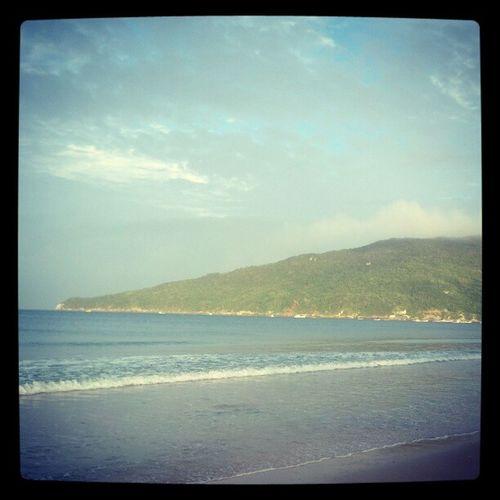 Beach Surf SC Praiadosingleses ingleses floripa florianopolis sc