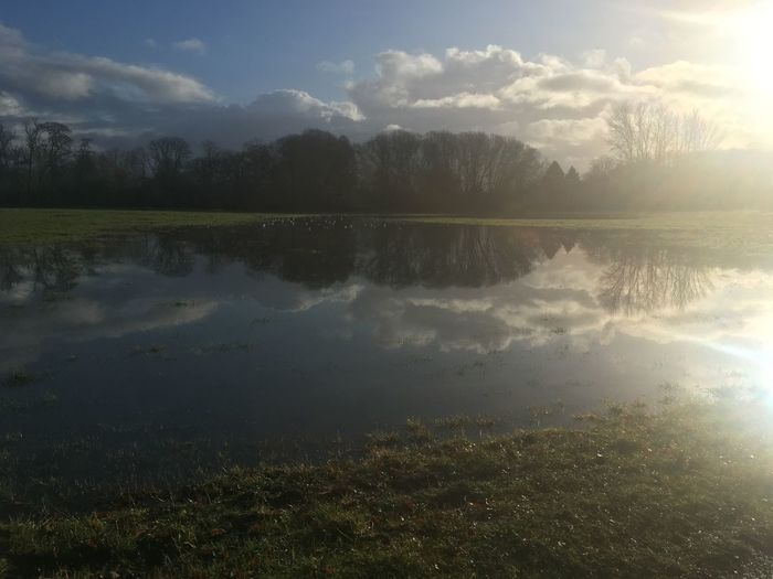 Hambledon field