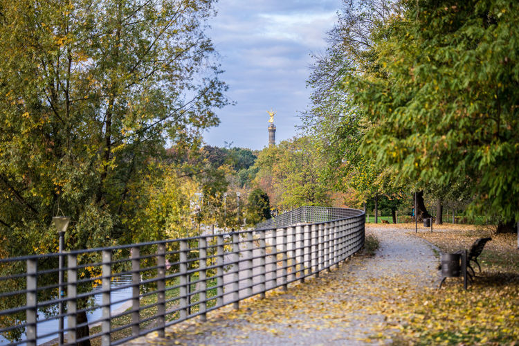 Morning walk in autumn in Berlin, Germany Autumn Leaves Day Morning Sunrise Tree Plant Nature No People Sky Growth Barrier Park Fence Outdoors Boundary Railing Direction Footpath Change Architecture Green Color Animal