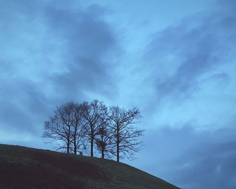 Nature No People Outdoors Scenics Iphonese Twilight Scene Trees And Sky Clouds And Sky