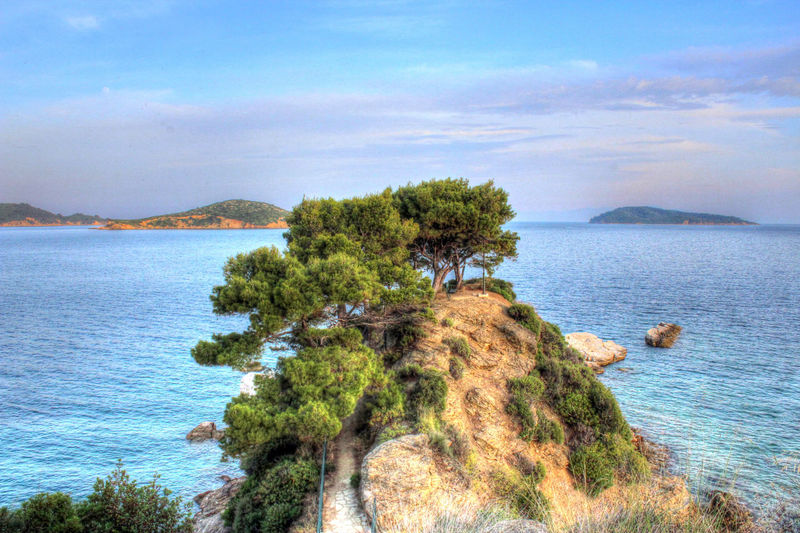 Blue Greece Green Island Mountain Sea And Sky Skiathos_island Tree