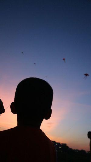 Child and kite