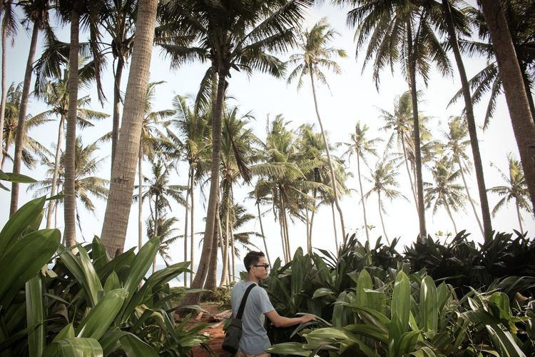 Young man standing against palm trees