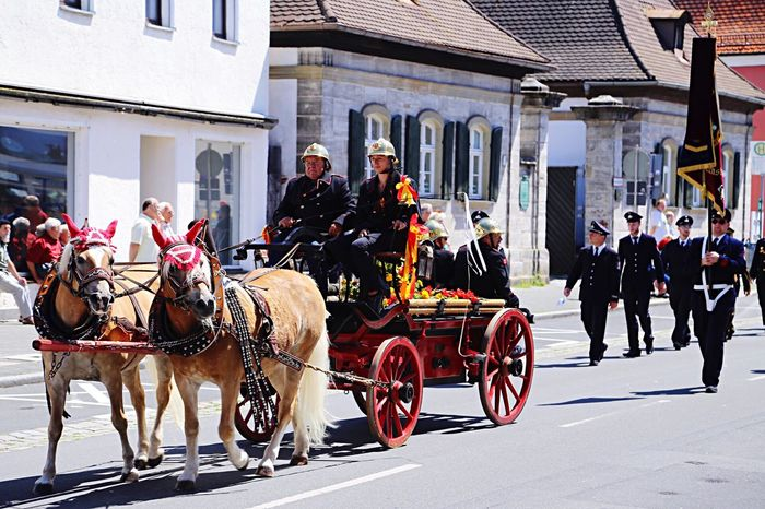 Service Animals Horse Horses Animals Animal_collection Firebrigade Oldschool Germany Festival Annafest