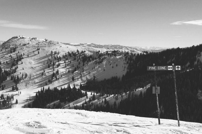 Pinecone ridge. Mountains Skiing Hiking Pinecone