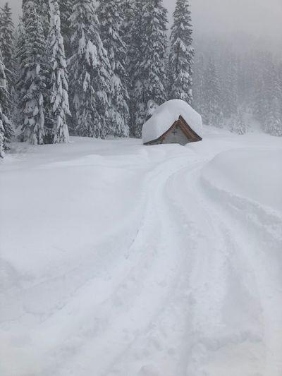 Deep winter in
