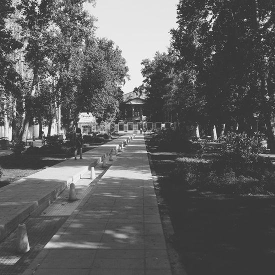 Street Photography Black & White Tehran photo by me