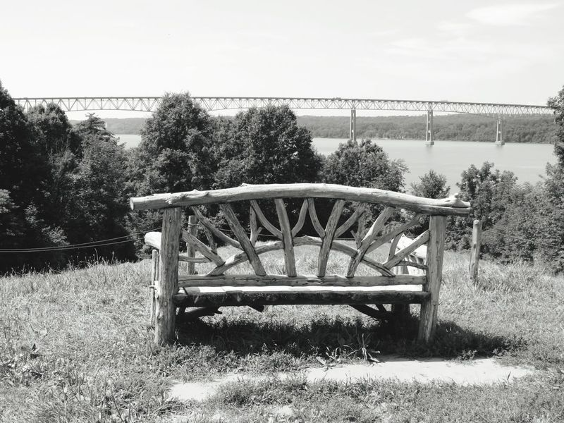 Tree Day Outdoors Water Grass Park - Man Made Space Sky No People Nature Beauty In Nature Black And White Photography Wood Structure Breathing Space EyeEmNewHere Investing In Quality Of Life Tranquility Poetswalk Kingston Rhinecliff Bridge Bridge - Man Made Structure Landscape Beauty In Nature Field Hudson River Hudson Valley