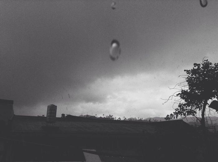 Summer Tears Rainy Days Silhouette