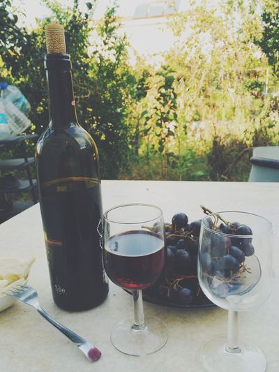 Wine Tasting Wine Alcohol Relaxing People Love