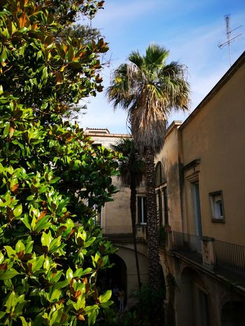 Corti Lecce Salento Italy🇮🇹 Tree Water House Architecture Building Exterior Sky Built Structure