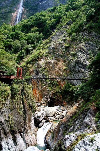 Suspendedbridge Taroko National Park Taiwan