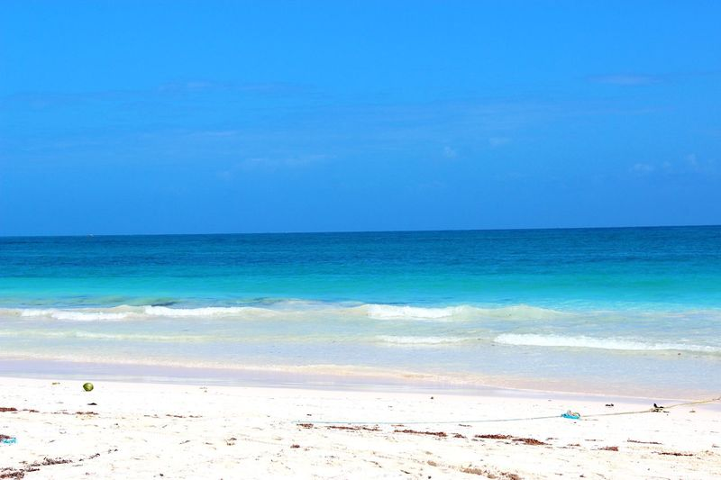 Cancun beach and the Caribbean Sea, Mexico. February 2016 Paradise Cancun Mexico Caribbean White Shades Of Blue Sea Water Beach Land Sky Blue Beauty In Nature Horizon Over Water Horizon Sand Scenics - Nature Nature Tranquility Idyllic Holiday Vacations