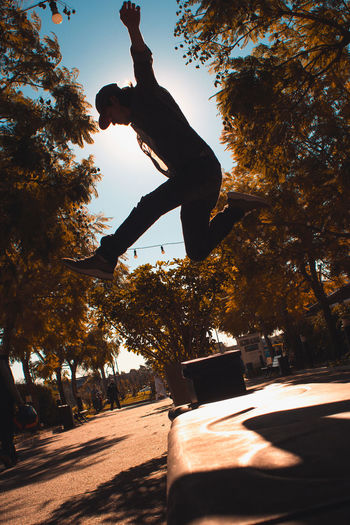 Low angle view of man jumping on tree