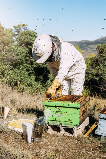 Man working over beehive on land