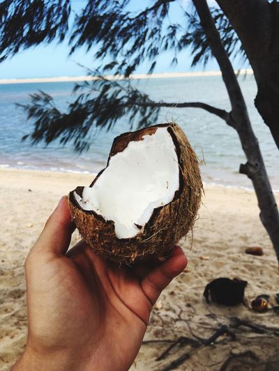 Cropped hand holding broken coconut at beach