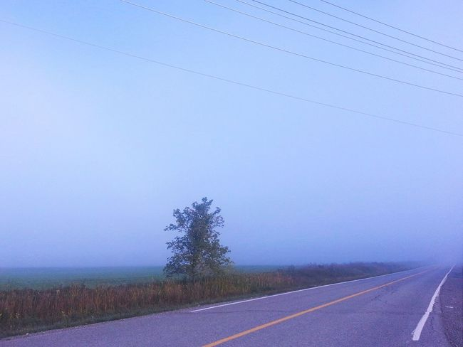 Approximately 500m visibility... On My Way Home Foggy Morning Fog Covered Rural Landscape Hugging A Tree EyeEm Best Shots - Landscape Canada Coast To Coast Fall Beauty Learn & Shoot: Single Light Source Deceptively Simple My Best Photo 2015 Landscapes With WhiteWall Blue Wave The Great Outdoors - 2016 EyeEm Awards The Great Outdoors With Adobe The Street Photographer - 2016 EyeEm Awards My Favorite Photo My Commute The Essence Of Summer Mein Automoment Fine Art Photography Home Is Where The Art Is Miles Away Long Goodbye Let's Go. Together.