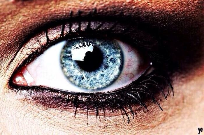 My eyes Blue Grey Eyes Blue Eyes Mine