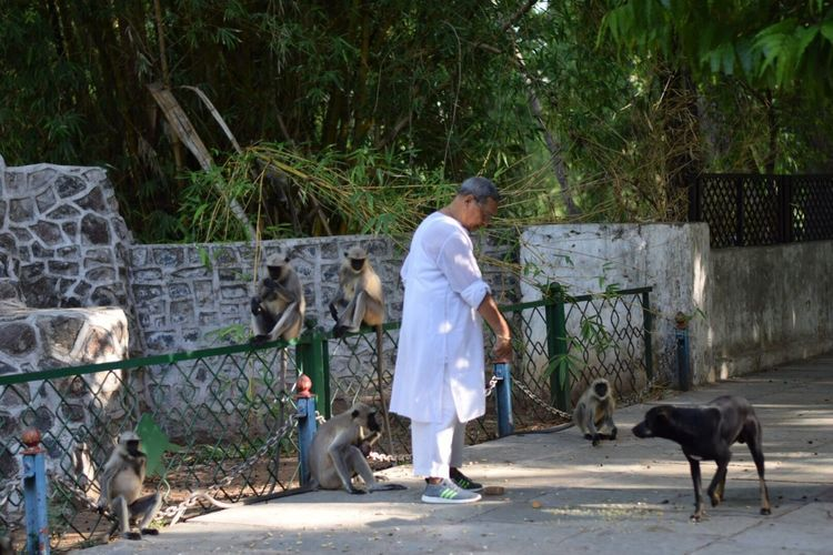 Street Photography Domestic Animals Mammal Pets One Person Full Length Dog Real People Outdoors Monkey Streetphotography The Week On EyeEm This Is Aging Focus On The Story