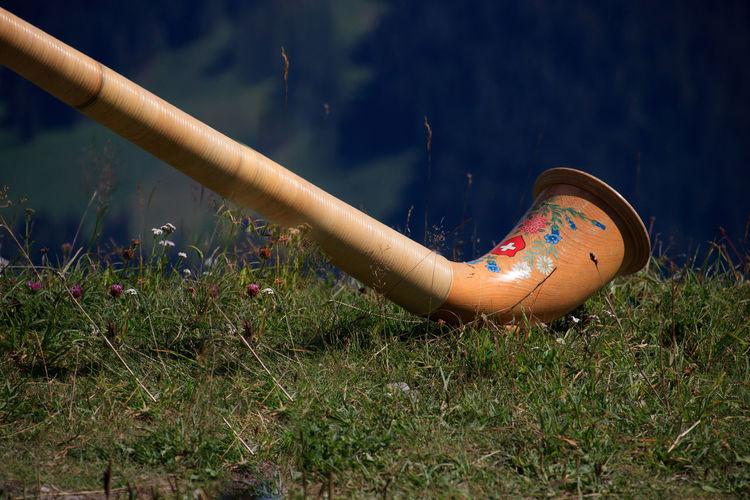 Swiss music