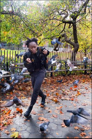 In Flight Birds Caught In The Moment Chance Favors The Well Prepared Full Length Large Group Of Objects Panic Pigeons Scared