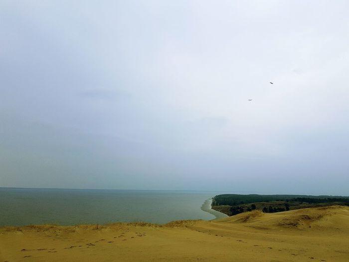 Grey Dunes Water Sky Day Beauty In Nature No People Sand Dune Nida Horizon Over Water Kursiu Nerija Curonian Lagoon Kurisches Haff Nature Lithuania Kursiu Marios Birds Fly