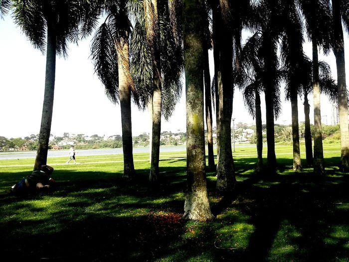 Um tempo, muita vida ao meu redor! Parque Barigüi, Curitiba, Paraná, Brasil. Curitibacool Sweet Moments MyWorld ♡ Myspace Days Ich Liebe Es.♥  UrbanART MyTIME