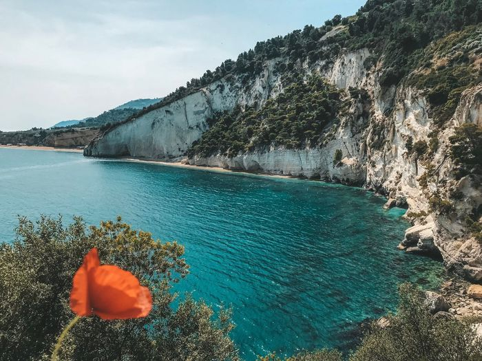 Puglia Italy Water Nature Sea Beauty In Nature Day Sky No People Tranquil Scene High Angle View Tranquility Outdoors Solid Scenics - Nature Rock Idyllic Land Sunlight Beach Tree Turquoise Colored