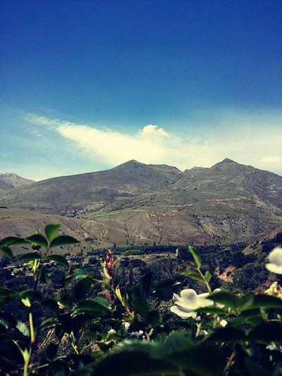 Dağ Gezisi