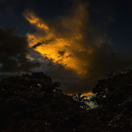 Natureza Orange Nikon Brasil Green Brasília Pordosol Sunset Nuvens Nature