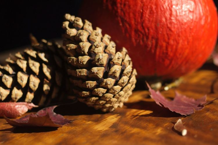 Close-Up Of Pumpkin And Pine Cones On Table