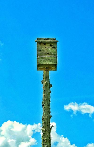 Birdhouse Old Bird House Birdhouse On A Pole High Up Martin House Blue Skies Ventage Birdhouse Lichens Lichen On A Tree Moss Growths On Tree Bird Photography Birds Of EyeEm  Bird Collection Animal Photography Antique House In The Sky View From Above Top Floor Crystal Springs, Ms.usa Where I Come From Times Past Long Ago Building Wooden Post