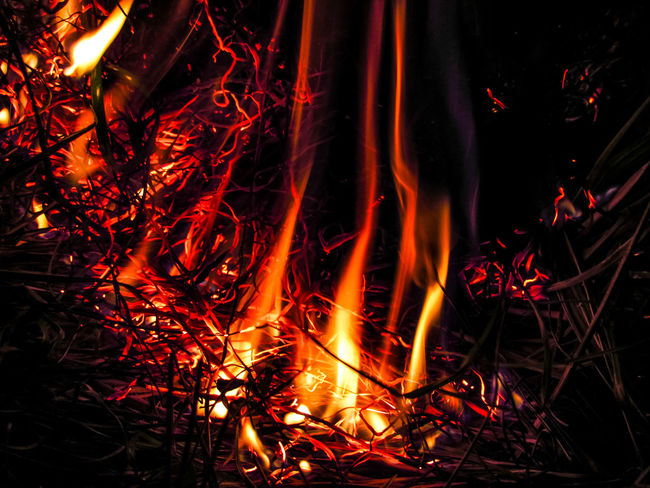 Burning Heat - Temperature Flame Glowing Night No People Illuminated Outdoors Luminosity Close-up Sparks Power In Nature Long Exposure Grass Fire Burning Outdoor Fire Destruction Burning Flame Motion Wildfire Inferno Flame Smoke - Physical Structure Black Sky Fireball