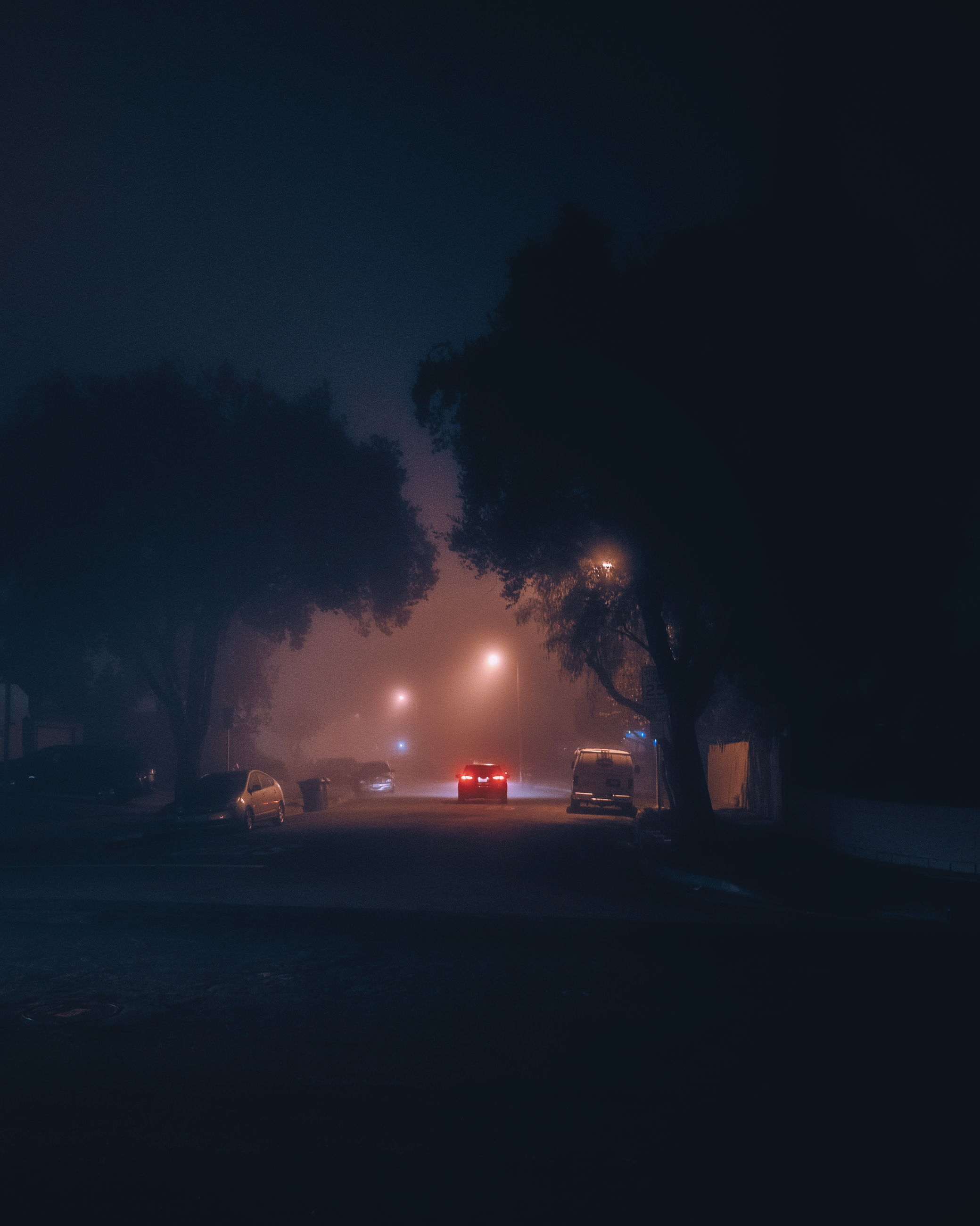 night, transportation, illuminated, car, mode of transportation, motor vehicle, street, land vehicle, no people, nature, sky, city, road, tree, outdoors, street light, plant, lighting equipment, motion, architecture, dark