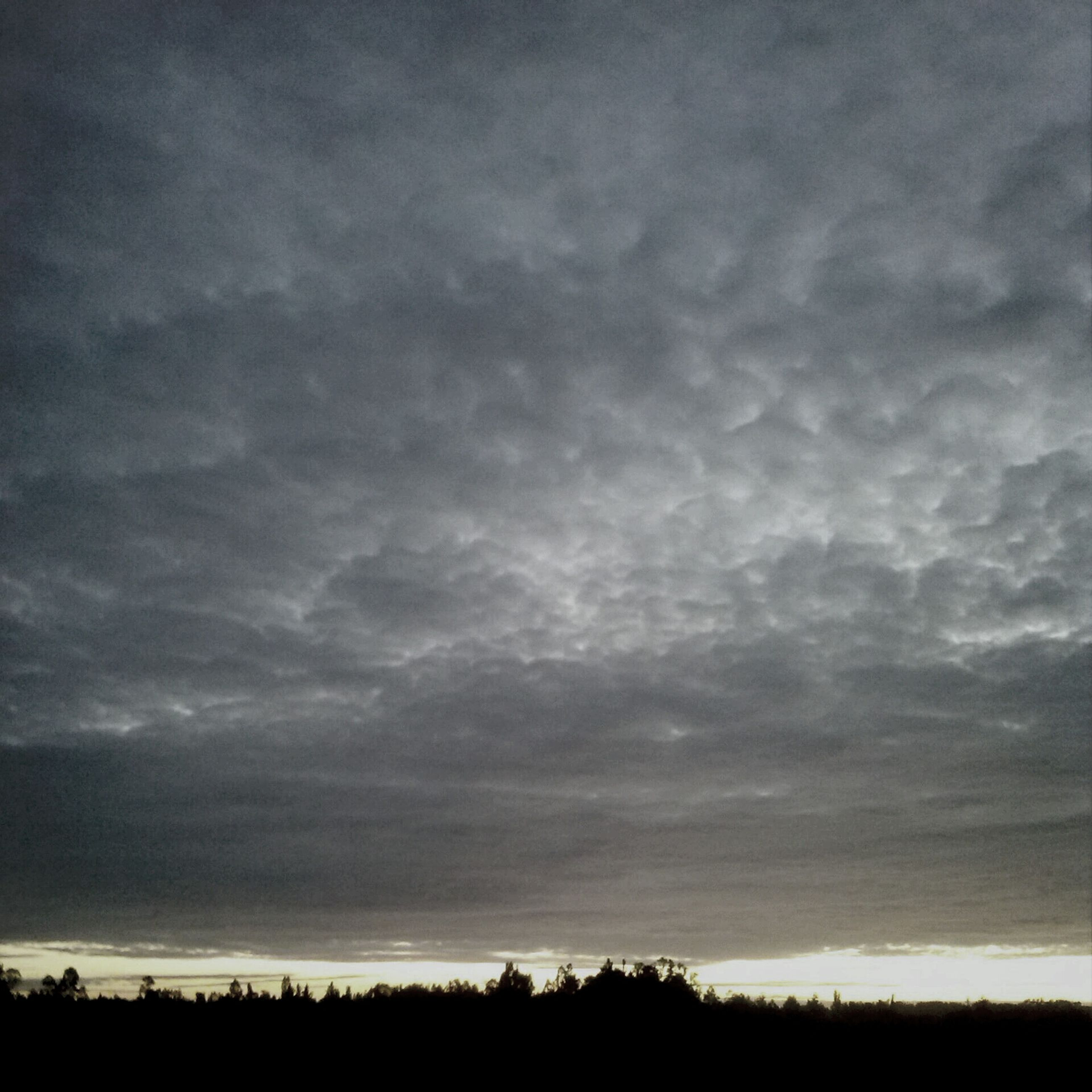 sky, tranquil scene, tranquility, scenics, cloud - sky, beauty in nature, landscape, cloudy, field, silhouette, nature, sunset, cloud, weather, overcast, idyllic, dramatic sky, dusk, horizon over land, tree