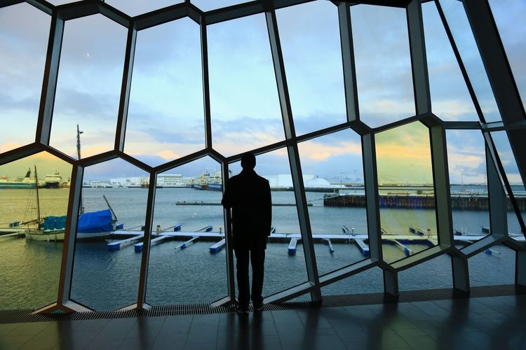 Rear view of silhouette man standing on railing against sky